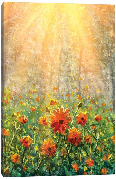 Vertical Cosmos Flowers Under Sunlight In The Field In Forest - Beautiful Flowers Canvas Art Print