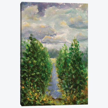 Painting Green Trees With River And Field Canvas Print #VRY446} by Valery Rybakow Art Print