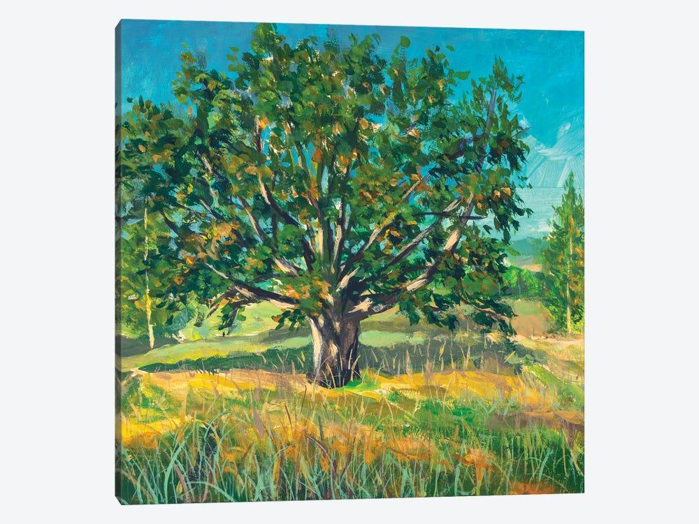 Painting Big Old Oak Tree by Valery Rybakow 1-piece Canvas Art