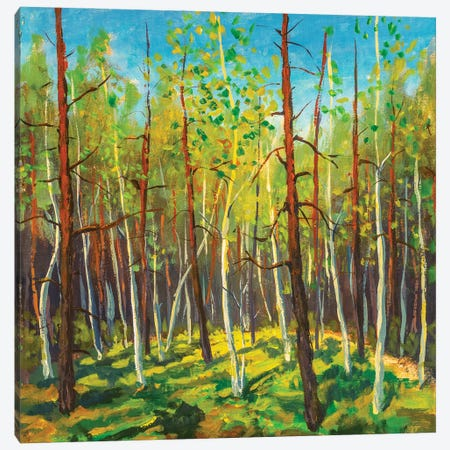 Painting Beautiful Sunny Forest Landscape Canvas Print #VRY455} by Valery Rybakow Canvas Art