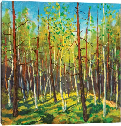 Painting Beautiful Sunny Forest Landscape Canvas Art Print
