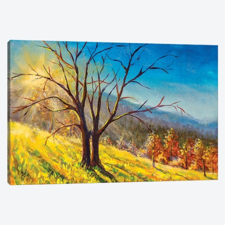 Old Big Tree In Sunny Day Without Leaves Canvas Print #VRY466} by Valery Rybakow Art Print