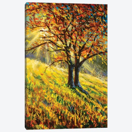 Bright Autumn Landscape Canvas Print #VRY467} by Valery Rybakow Canvas Art Print