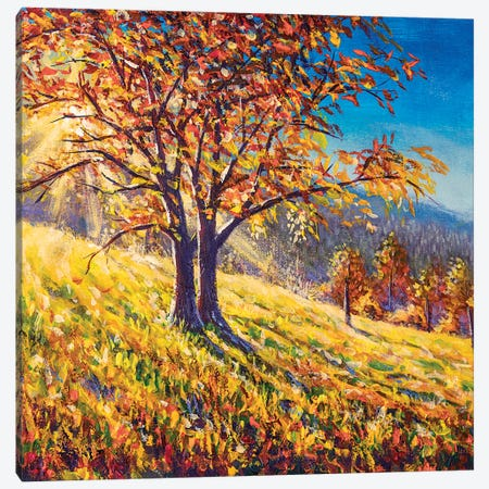Fantastic Sunset With Autumn Tree Canvas Print #VRY468} by Valery Rybakow Canvas Artwork