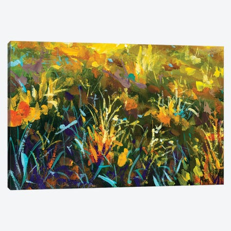 Grass Flowers In Rays Of Sun Canvas Print #VRY473} by Valery Rybakow Canvas Art Print