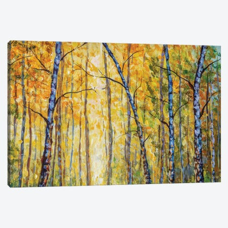 Beautiful Autumn Park With Birch Tree Modern Artwork Canvas Print #VRY478} by Valery Rybakow Canvas Art Print