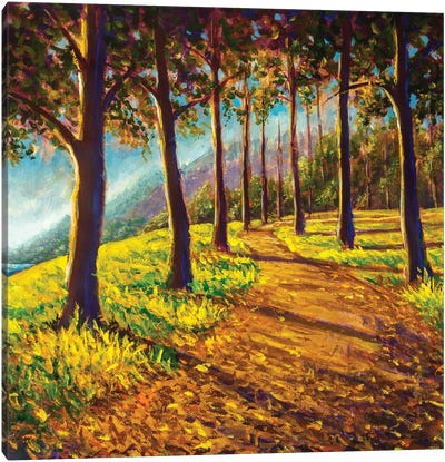 Road In Sunny Forest Park Alley Artwork Canvas Art Print