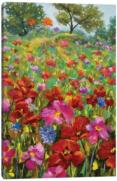 paintings red poppies, pink wildflowers in green grass Canvas Art Print
