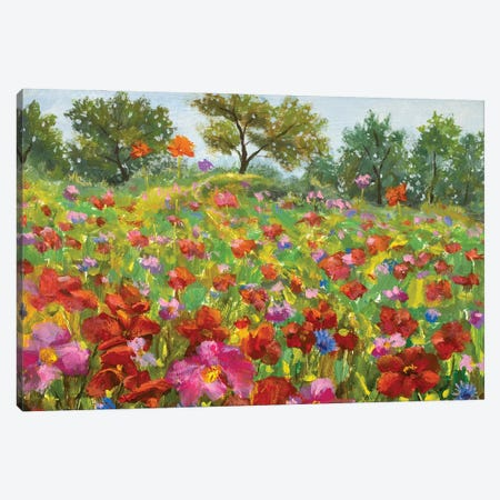 beautiful blooming Wildflowers field Canvas Print #VRY499} by Valery Rybakow Canvas Print