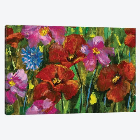 paintings red poppies, pink wildflowers in green grass art Canvas Print #VRY500} by Valery Rybakow Canvas Print