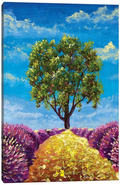 Oil Painting Warm Summer Landscape With Beautiful Tree, Path And Lush Lavender Bushes Canvas Art Print