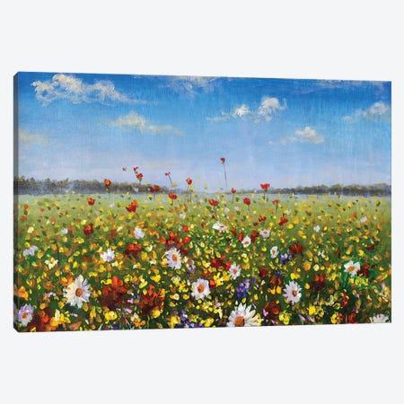 Flower Painting Wildflowers White Daisies, Red Poppies And Yellow Beautiful Flowers In Grass Canvas Print #VRY530} by Valery Rybakow Canvas Art