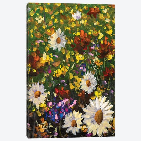 Beautiful Field Flowers On Canvas Canvas Print #VRY532} by Valery Rybakow Canvas Wall Art