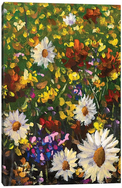 Beautiful Field Flowers On Canvas Canvas Art Print