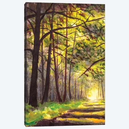 Sunlight Park Alley Forest Rural Landscape Canvas Print #VRY558} by Valery Rybakow Canvas Art
