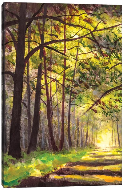 Sunlight Park Alley Forest Rural Landscape Canvas Art Print