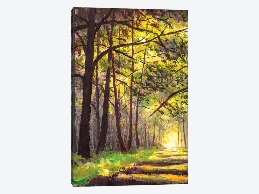 Sunlight Park Alley Forest Rural Landscape by Valery Rybakow 1-piece Art Print