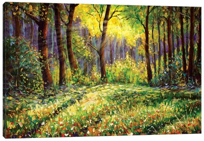 In Sunny Forest Canvas Art Print