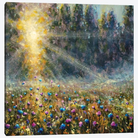 Oil Painting Meadow Of Flowers At Dawn Sunset Canvas Print #VRY570} by Valery Rybakow Canvas Artwork