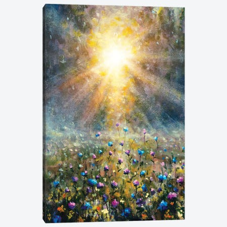 Flowers On Wildflowers Field During Sunrise Painting Canvas Print #VRY571} by Valery Rybakow Canvas Art