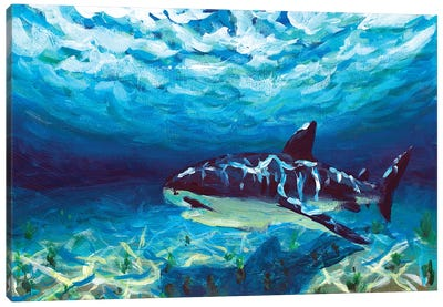 King Of The Ocean Canvas Art Print