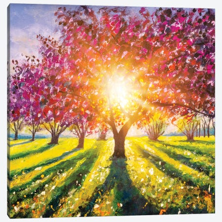 Spring Landscape With Flowering Trees And Colorful Sunny Green Meadow Canvas Print #VRY593} by Valery Rybakow Canvas Wall Art