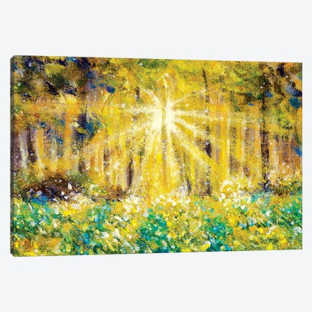 Beautiful Sun Rays In Forest Field Canvas Print #VRY595} by Valery Rybakow Art Print
