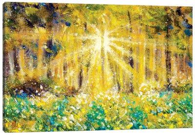 Beautiful Sun Rays In Forest Field Canvas Art Print
