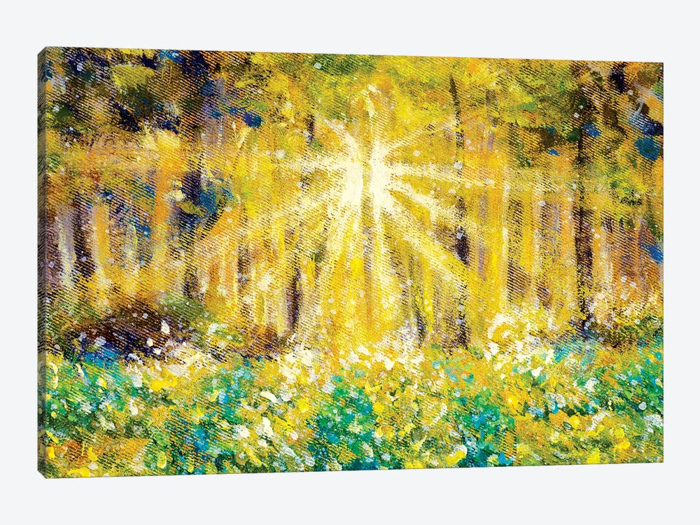 Beautiful Sun Rays In Forest Field by Valery Rybakow 1-piece Canvas Wall Art
