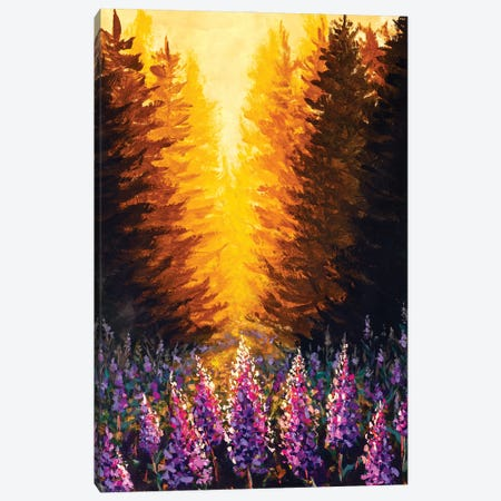 Beautiful Pink Purple Flowers Ivan-Tea Fireweed At Sunset In Forest Canvas Print #VRY601} by Valery Rybakow Canvas Artwork