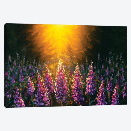 Beautiful Field Flowers On Sunset Painting Canvas Print #VRY603} by Valery Rybakow Canvas Art