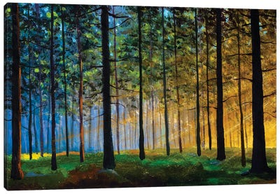 Oil Painting On Canvas Modern Impressionism Sunny Forest Landscape Canvas Art Print