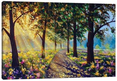 Sunny Forest Landscape Art Canvas Art Print