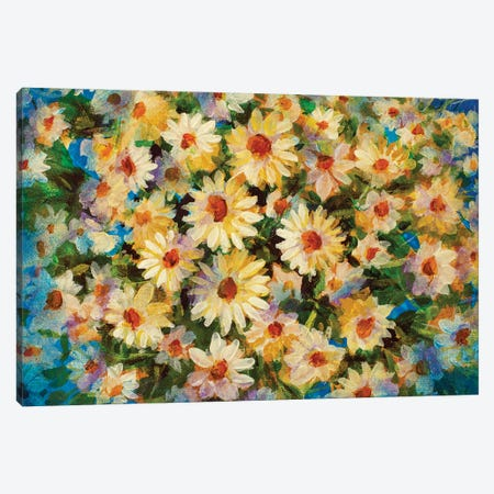 Beautiful Flower Chamomile Canvas Print #VRY627} by Valery Rybakow Canvas Print