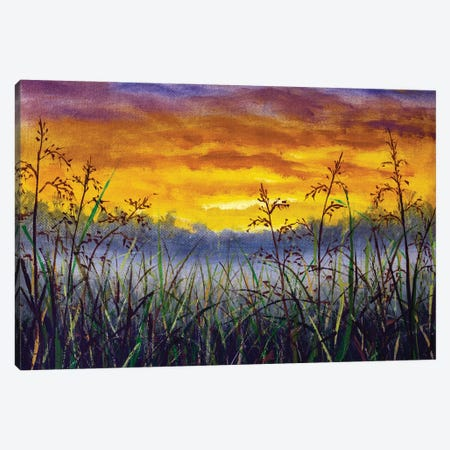 Grass In Meadow Against Backdrop Of Beautiful Sunset Dawn Paintings Canvas Print #VRY646} by Valery Rybakow Canvas Art Print