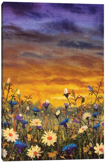 Flowers Field White Daisies Flowers Blue Cornflowers Oil Painting Canvas Art Print