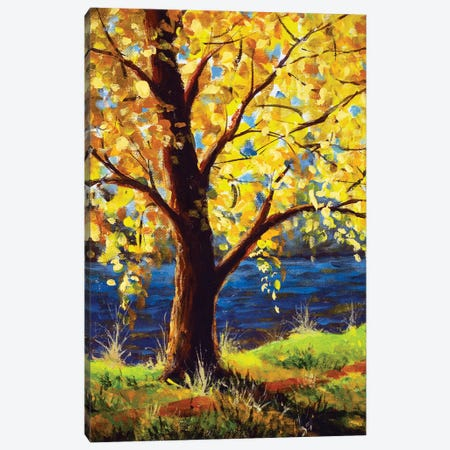 Sun Rays Through Branches Of Trees Canvas Print #VRY660} by Valery Rybakow Canvas Artwork