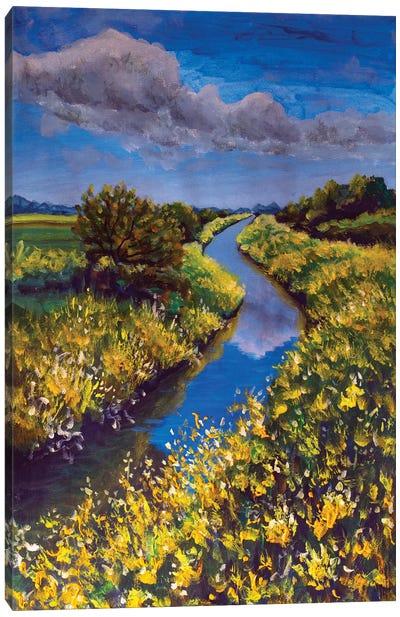 Field Of Yellow Wildflowers Blue Sky Beautiful River Canvas Art Print