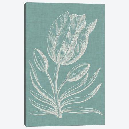 Graceful Floral I Canvas Print #VSN119} by Vision Studio Canvas Artwork