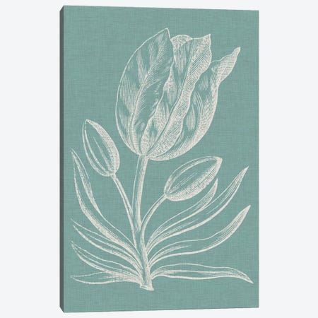 Graceful Floral I Canvas Print #VSN119} by Vision Studio Canvas Artwork