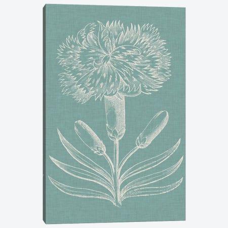 Graceful Floral II Canvas Print #VSN120} by Vision Studio Canvas Art Print