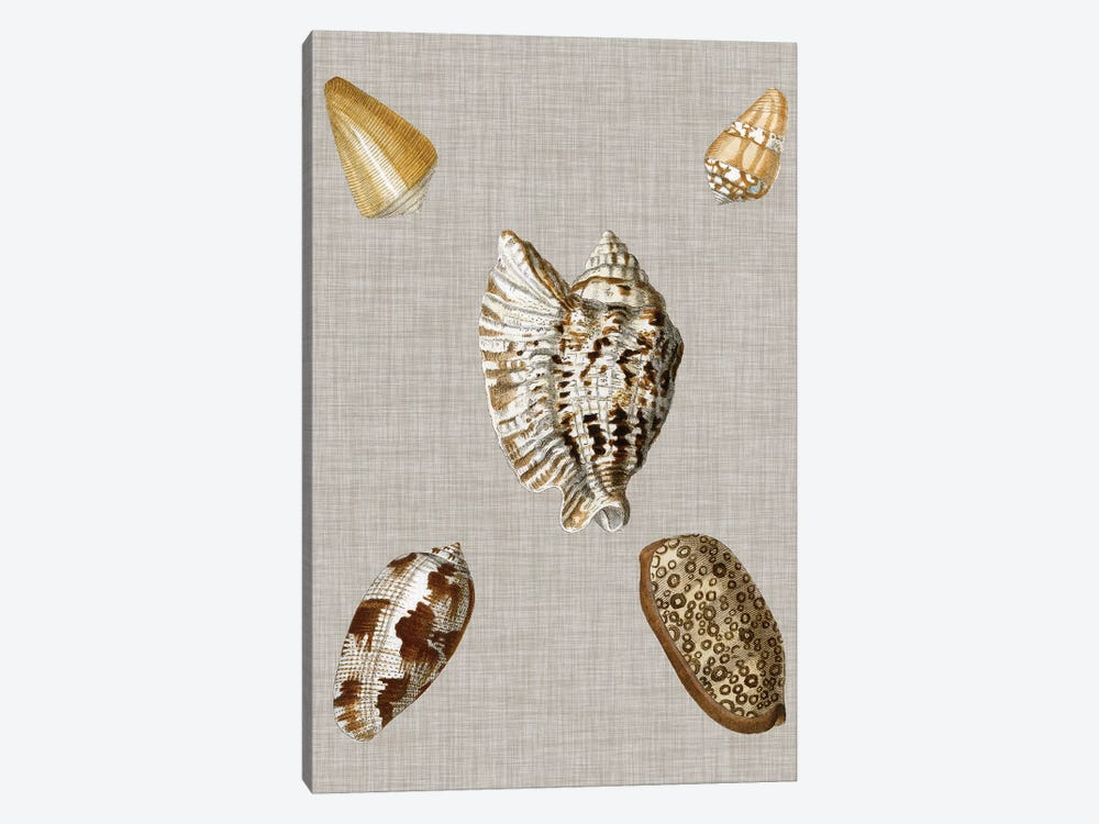 Shells On Linen I by Vision Studio 1-piece Canvas Art Print
