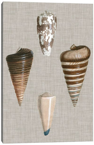 Shells On Linen III Canvas Print #VSN125