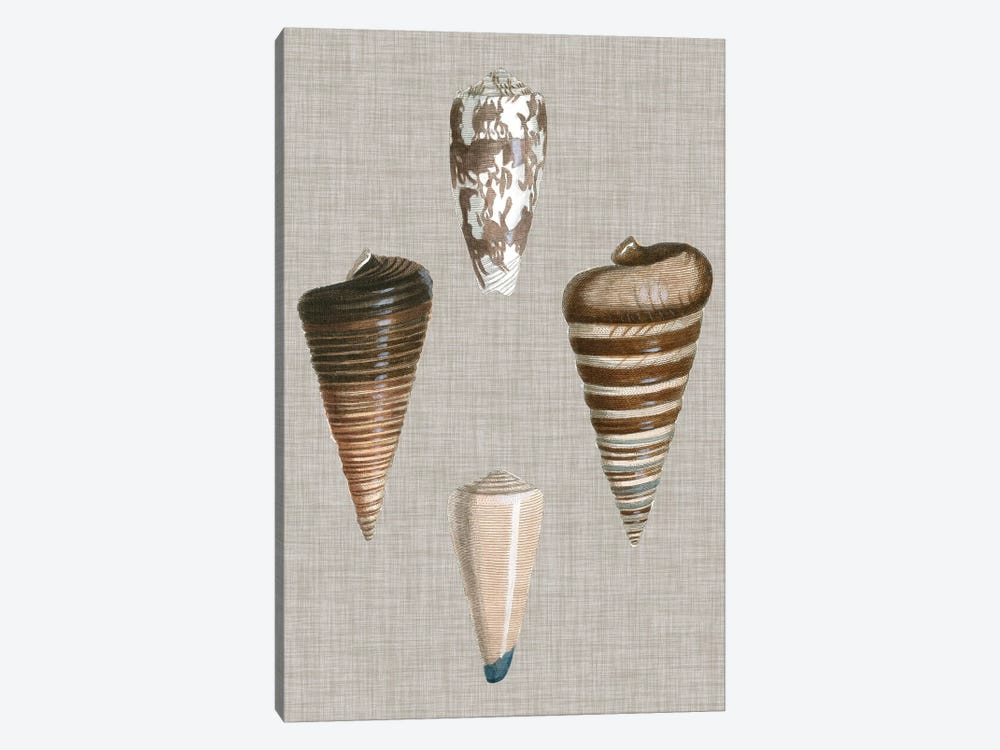 Shells On Linen III by Vision Studio 1-piece Canvas Print