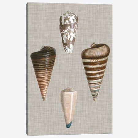 Shells On Linen III Canvas Print #VSN125} by Vision Studio Canvas Wall Art