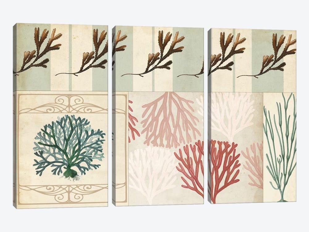 Coastal Patternbook I by Vision Studio 3-piece Canvas Art Print
