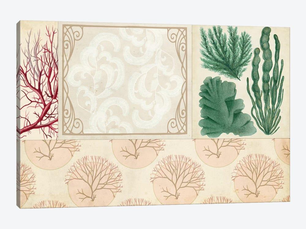 Coastal Patternbook II by Vision Studio 1-piece Canvas Artwork
