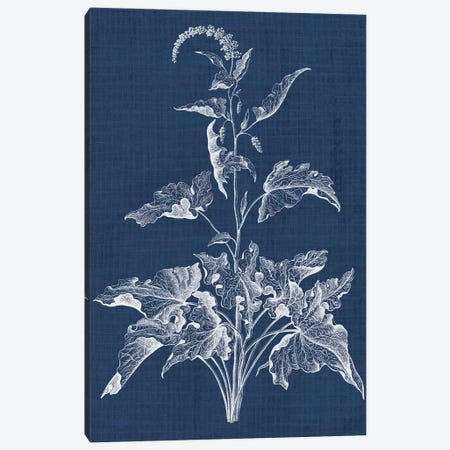 Foliage Chintz II Canvas Print #VSN153} by Vision Studio Canvas Art