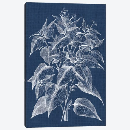 Foliage Chintz III Canvas Print #VSN154} by Vision Studio Art Print