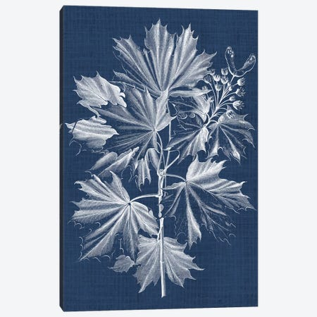 Foliage Chintz V Canvas Print #VSN156} by Vision Studio Canvas Art Print